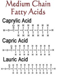 coconut-oil-medium-chain-fatty-acids-diagram
