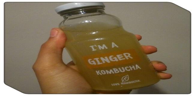 love-kombucha-ginger-soft-drinks-alternative-alcohol-alternative-vegan-gluten-free