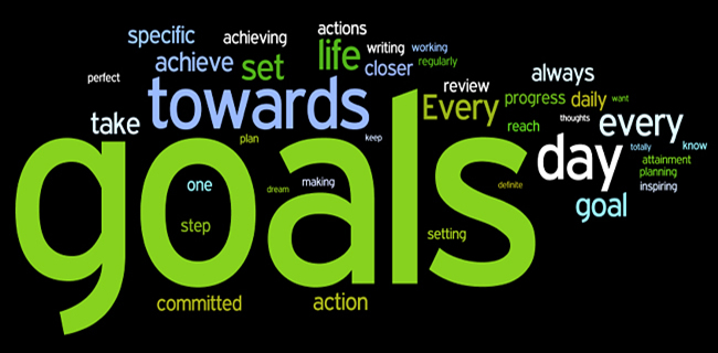 my goals and aspirations for 2015